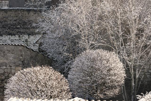 neige_5087-r